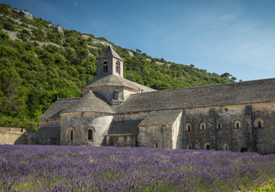 The Abbey of Sénanque (80 Km):